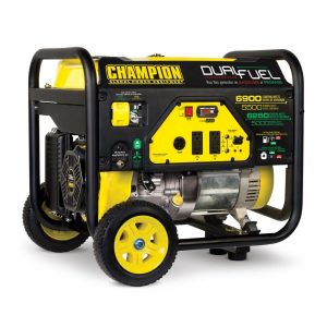 Champion 76533 Dual Fuel Portable Generator